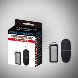 T rex remote egg black remote control egg 12 speed - Power Escorts